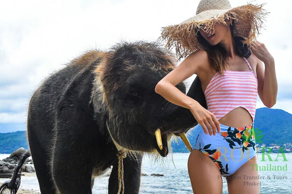 プーケットのビーチで象と遊ぶ!ラッキービーチの2019年最新版!