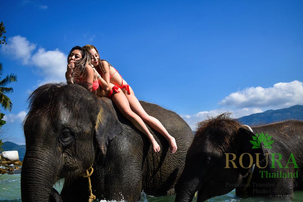 プーケットのビーチで象と遊ぶ!ラッキービーチの2020年最新版
